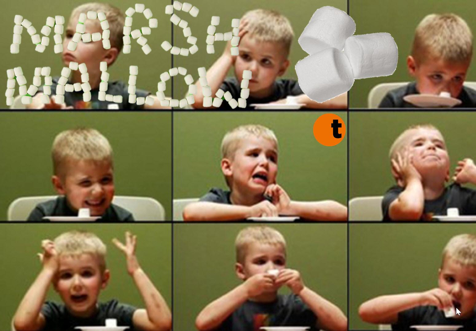 Marshmallow-t