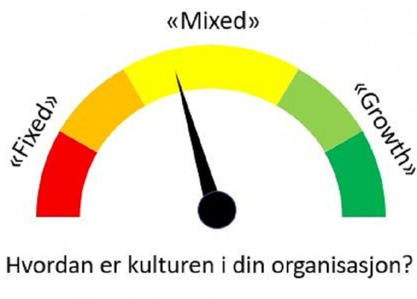 kultur-analyse-fixed-mixed-growth.jpg